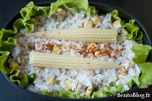 Bento 178 salade riz et thon