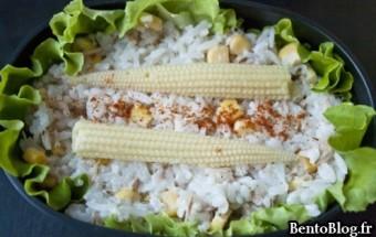 Bento 178 : riz, thon et commande bien manger