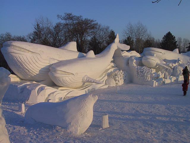 sculpture neige baleines