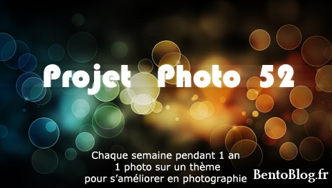 http://www.bentoblog.fr/wp-content/uploads/2011/01/projet52.jpg
