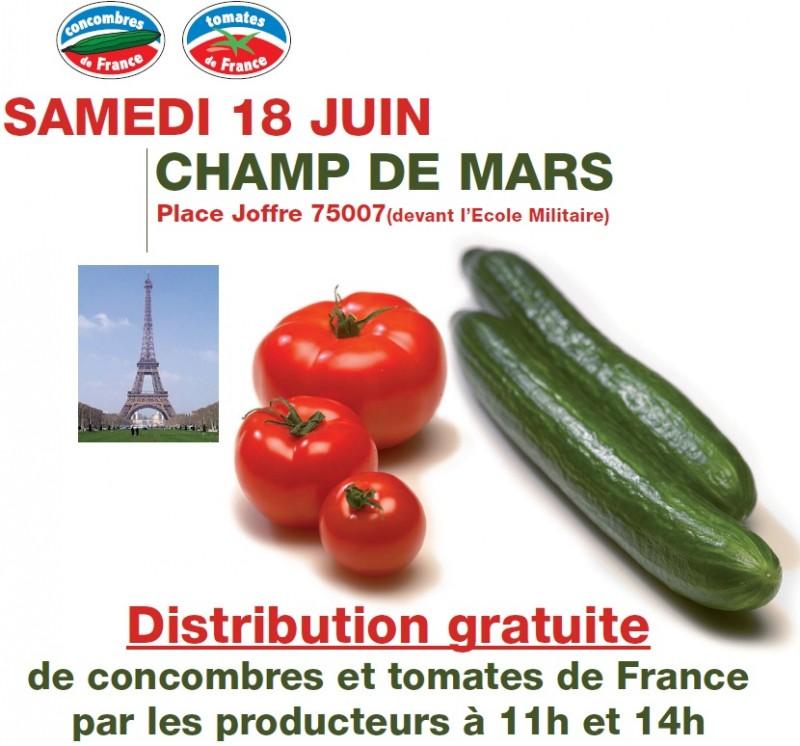 Distribution concombre tomate Paris