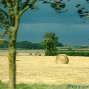 Projet Photo 52 campagne