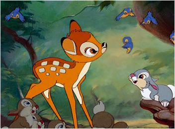 Bambi panpan photo