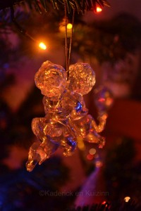 Projet Photo 52 Noël